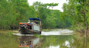 Delta del Vietnam, il Mekong Immagine Stock