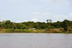Delta dell'Orinoco fotografia stock libera da diritti