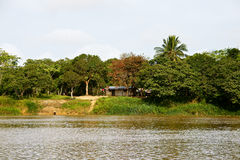 Delta dell'Orinoco fotografie stock libere da diritti