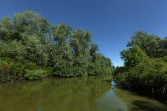 Delta di Danubio fotografie stock libere da diritti