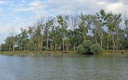 Delta di Sulina Danubio più orest immagini stock