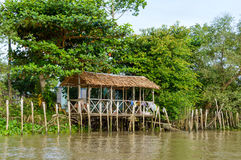Delta do rio de Mekong fotografia de stock royalty free