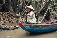 Delta du Mékong Photographie stock libre de droits