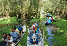 Delta du Mékong, forêt d'indigo de Tra Su, éco-tourisme photographie stock