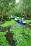 Delta du Mékong, forêt d'indigo de Tra Su, éco-tourisme photo libre de droits