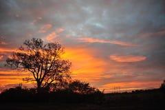 Delta du Mississippi, milliseconde Sunrise de Clarksdale Image stock