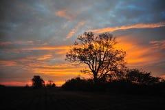 Delta du Mississippi, milliseconde Sunrise de Clarksdale Photo libre de droits