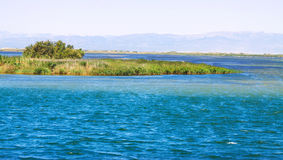 Delta of Ebro river Royalty Free Stock Photography