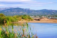 Delta of Ebro  in summer Stock Photo