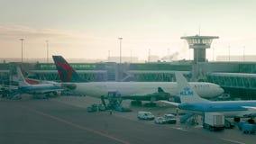 Delta et avions de KLM sur les terminaux à l'aéroport de Schiphol banque de vidéos
