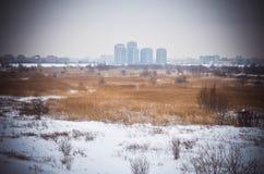 Delta gelé Bucarest de Vacaresti de neige d'hiver Photo libre de droits