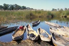 Delta mokoros okavango 库存图片
