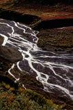 delta rzeki Obrazy Royalty Free