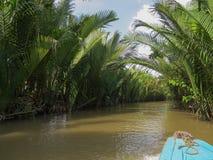 Delta stretto del Mekong con acqua fangosa e le belle piante lungo le banche fotografia stock libera da diritti