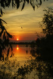 Delta sunset. A sunset in the Danube Delta Stock Photos