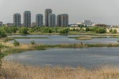 Delta van Boekarest Stock Fotografie