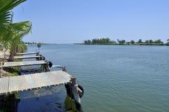 Delta van de Ebro rivier Stock Foto