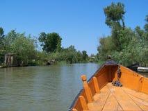 Delta van Donau. stock foto's