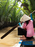Delta Vietnam del Mekong foto de archivo