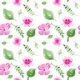 Άνευ ραφής σχέδιο με τα λουλούδια και τα φύλλα διανυσματική απεικόνιση