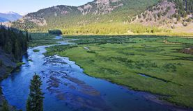 A Delta Where Lake Fork Gunnison River Flows into Lake San Crist. A Delta Where the Lake Fork of the Gunnison River Flows into Lake San Cristobal on the Alpine Stock Photography