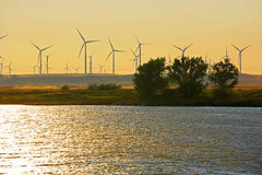 Delta Wind Farm Royalty Free Stock Photography
