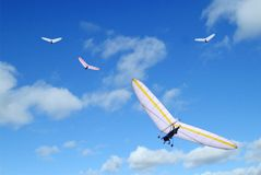 Delta wings. Group of motor delta wings against blue sky with clouds Stock Photos