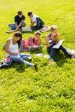 Deltagare som studerar att sitta i parktonåret royaltyfri fotografi