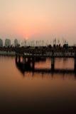 Deltan parkerar på solnedgången Royaltyfri Bild
