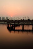 Deltapark bij zonsondergang Royalty-vrije Stock Afbeelding