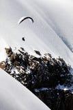 Deltaplano sopra le alpi svizzere Immagine Stock