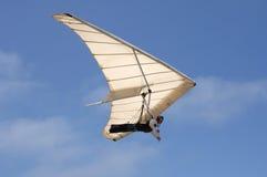 Deltavliegen Royalty-vrije Stock Afbeeldingen