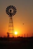 Deltavlieger in de zonsondergang met een windmolen Royalty-vrije Stock Foto's