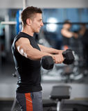 Delts workout with dumbbells Stock Photography
