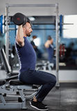 Delts workout with dumbbells Royalty Free Stock Photography