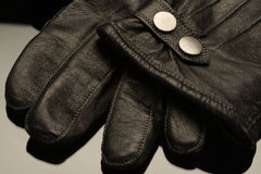 Deluxe leather Royalty Free Stock Photo