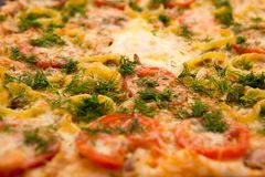 Deluxe Pizza Macro Pattern. Mozzarella, diced tomatoes and fennel pizza close up Royalty Free Stock Image