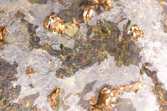 Delvist djupfryst ström Royaltyfria Foton