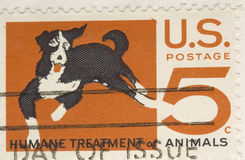 Demande de règlement humanitaire d'estampille du cru 1964 des animaux image libre de droits