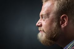 Demanding bearded man. Close-up portrait of left cheek of strict and demanding bearded man. Blond man googling his eyes on black background Stock Photo