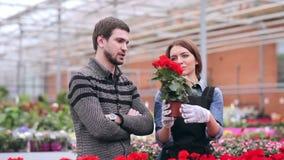 Demanding customer buying flowers in orangery. Angered buyer choosing flowers in greenhouse stock video footage