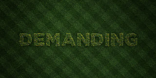 DEMANDING - fresh Grass letters with flowers and dandelions - 3D rendered royalty free stock image Royalty Free Stock Photo