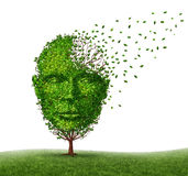 Dementia Disease. Dealing with Alzheimer illness as a medical icon of a tree in the shape of a front view human head and brain losing leaves as challenges in Stock Photography