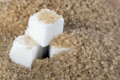 Demerara Sugar & Sugar Cubes Royalty Free Stock Photos