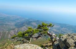 Demerji mountain in Crimea near Alushta.  Royalty Free Stock Image