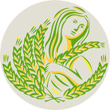 Demeter Harvest Wheat Grain Circle Retro Stock Photos