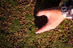Demi coeur de main dans le coucher du soleil 2 Image stock