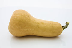 Demi courge de Butternut Photo stock