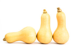 Demi courge de Butternut Photo libre de droits