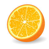demi d'orange d'illustration Photos libres de droits